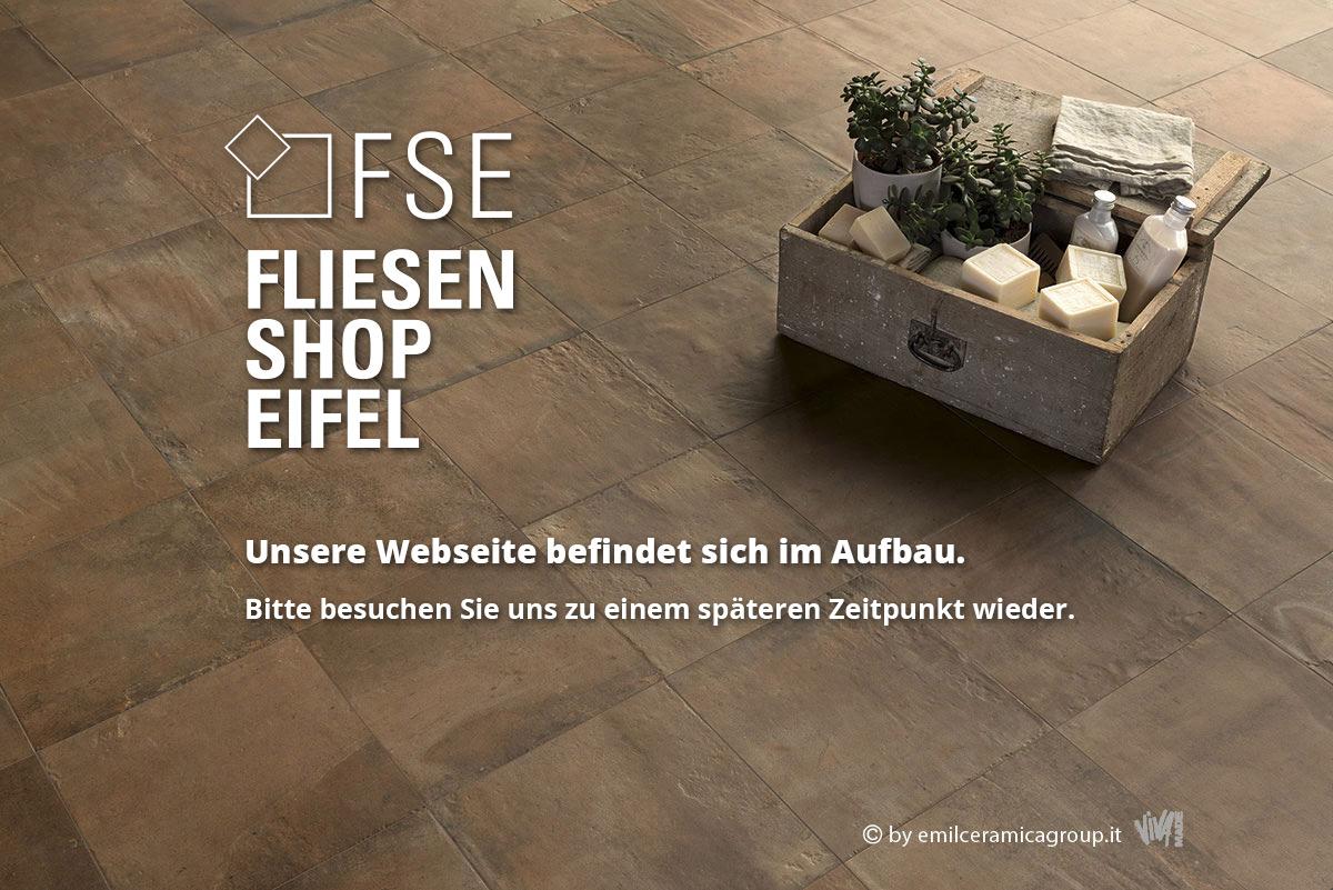 FSE-startseite